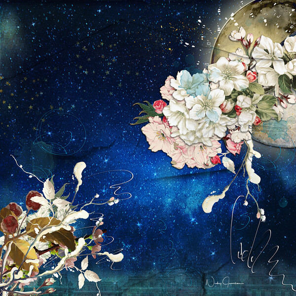 Flowers in a Night Sky