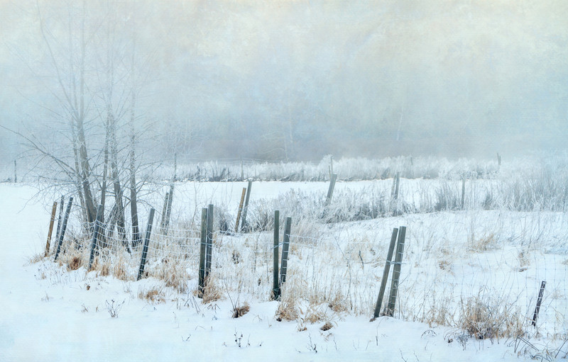 Farm Fence in Snowstorm