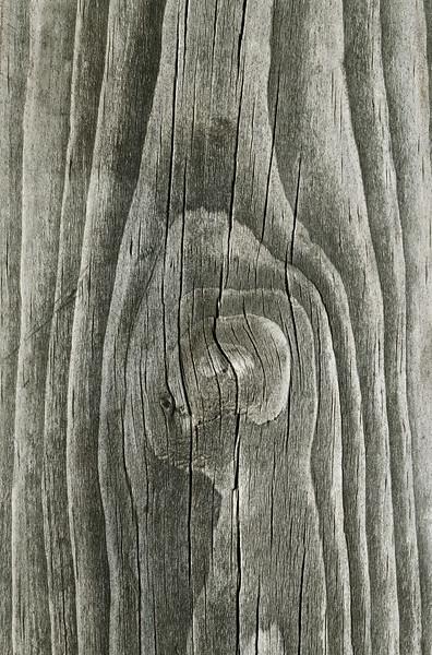 Old Wood --- Image by © 2/Siede Preis/Ocean/Corbis