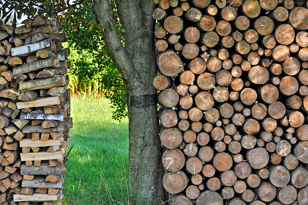 Stack of wooden logs, firewood, Anzing, Upper Bavaria, Bavaria, Germany, Europe --- Image by © Raimund Kutter/imageBROKER/Corbis