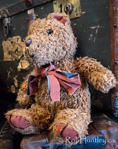 Raggedy Teddy on old shipping trunks. Photographed at Pier 21 Museum in Halifax, Nova Scotia.