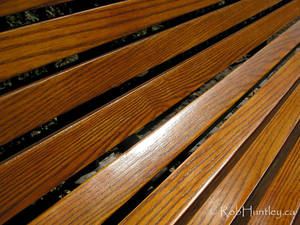 Wooden bench showing wood grain. © Rob Huntley