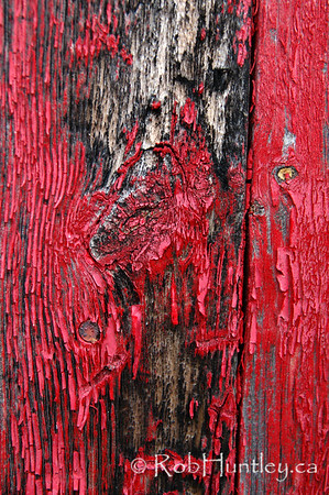 Black stains on shed siding board with flaking red paint.