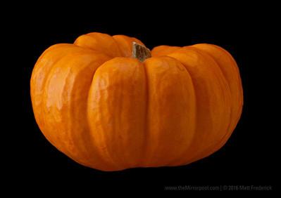 tinyPumpkins_13