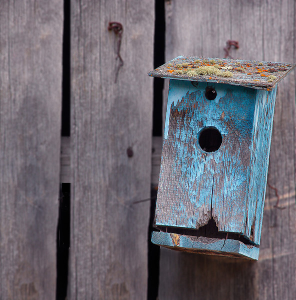 Blue Birdhouse