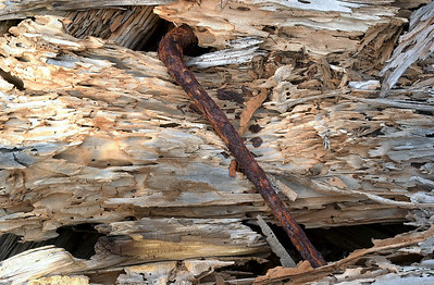 Driftwood and Spike - Hawaii