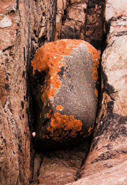 Lichen Rock 1