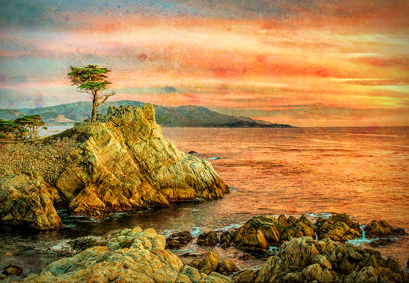 Sunset-The Lone Cypress
