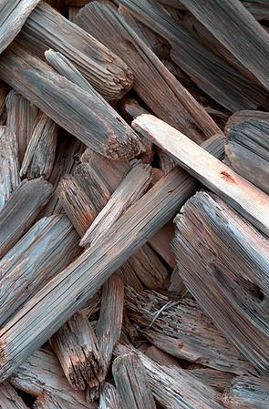 Weathered driftwood - Molokai, Hawaii