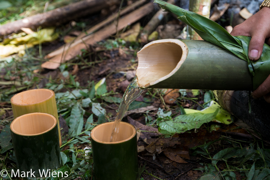 Jungle tea