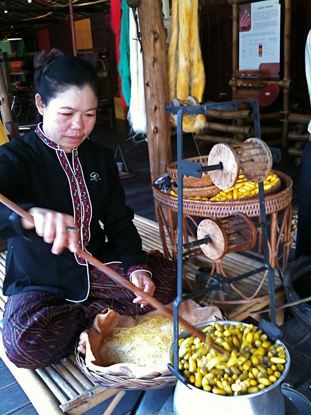 extracting silk