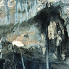 Bird nest cave