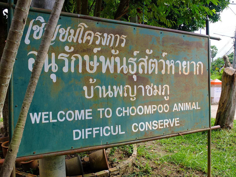 Chompoo Animal Conserve