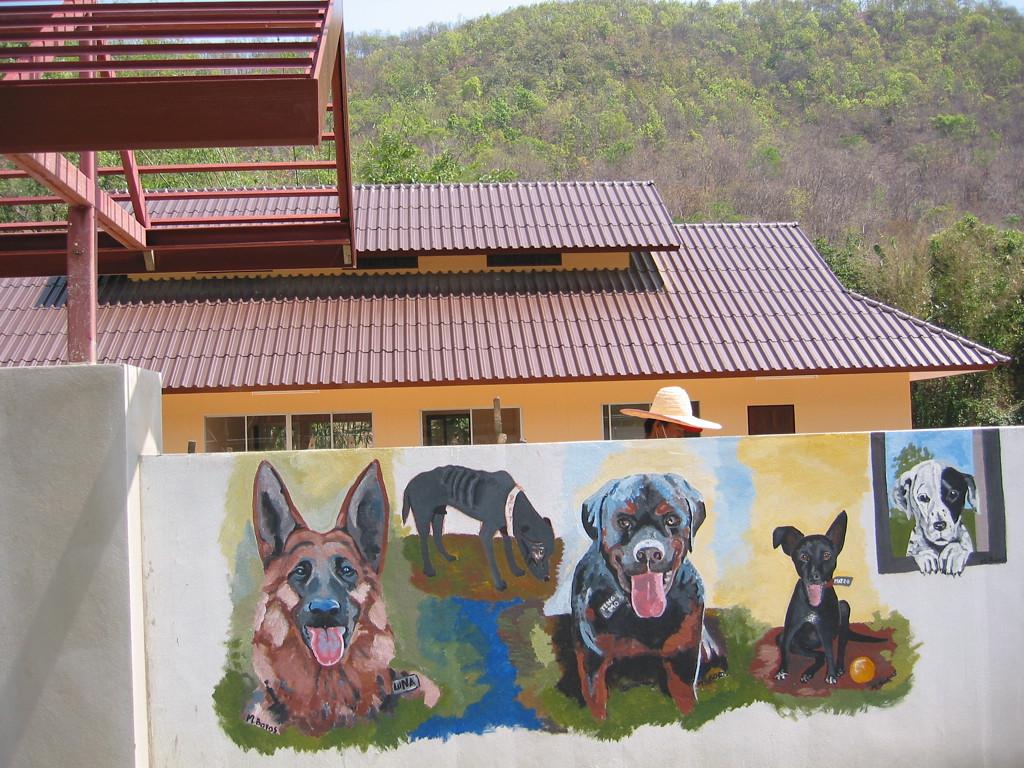 Lanna Dog Rescue 2