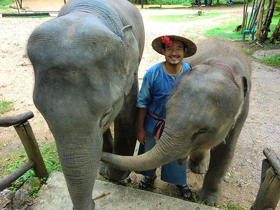 Elephants and mahout