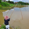 Net fishing in Chiang Mai 2