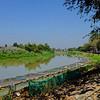 Fish farming on mae ping 2