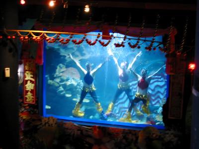 Aquarium showgirls