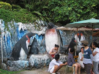 Giant Penguins?
