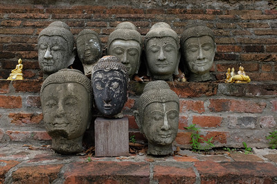 Buddha head collection