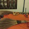 Temple kitty