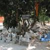 Wat Pa Ngew 9