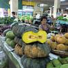 Talad Thanin (market) 7 : great squash