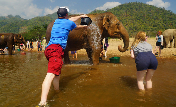 Bathing the majestic elephants at Elephant Nature Park in Chiang Mai, Thailand
