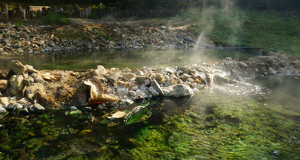 The hot springs we visited in Pai, Thailand