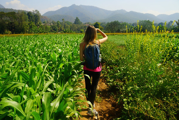 Audrey Bergner examining the views from the crops in Pai, Thailand