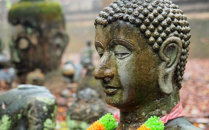 Visiting Wat Umong, Chiang Mai