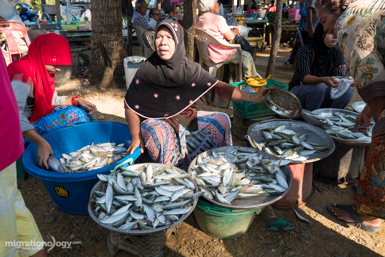 fish being sold at the market