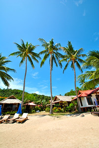 things to do on koh tao