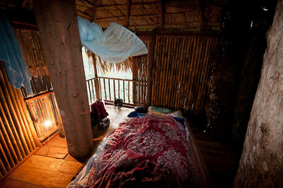 My treehouse room, Chiang Dao Mountains, Chiang Mai