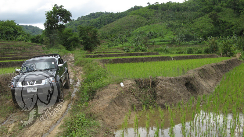 Khun Bird drives the support truck through the trail.