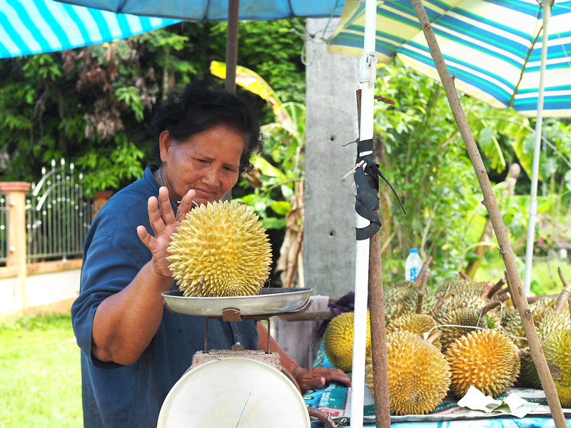 southern thailand durian