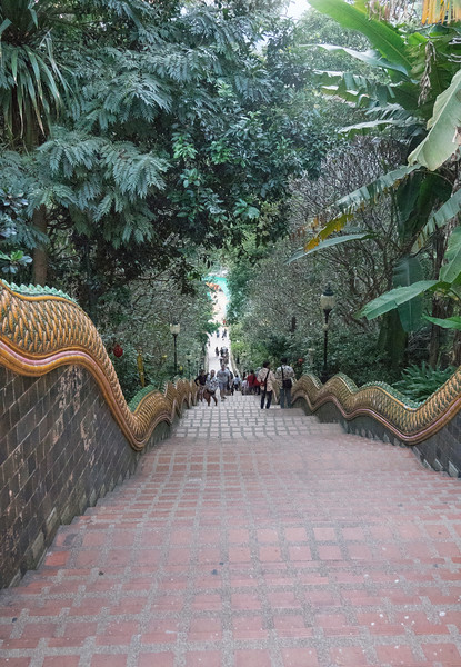 Wat Phra That Doi Suthep Temple steps