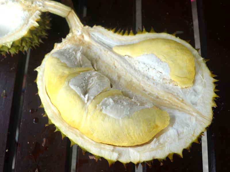 thailand durian