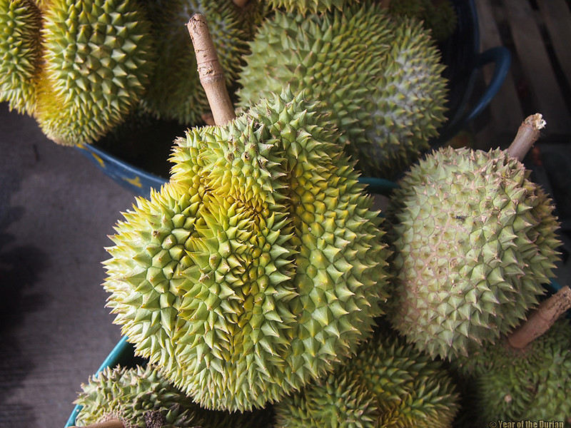 //www.yearofthedurian.com/2015/05/rayong-fruit-festival-2015-rayong.html