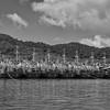 Chinese fishing boats laid up off the east coast of Phuket