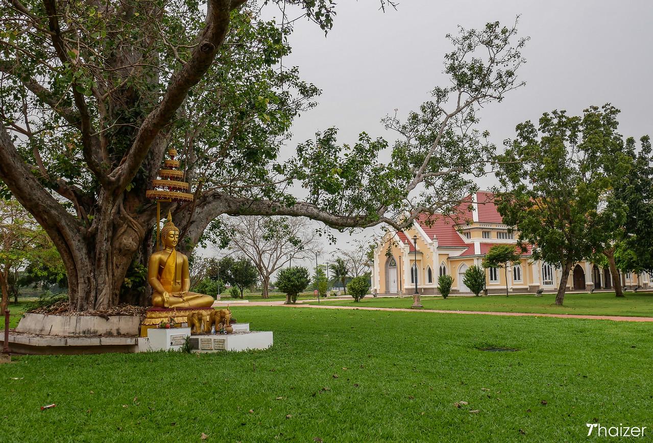 Buddha statues at Wat Niwet Thamprawat