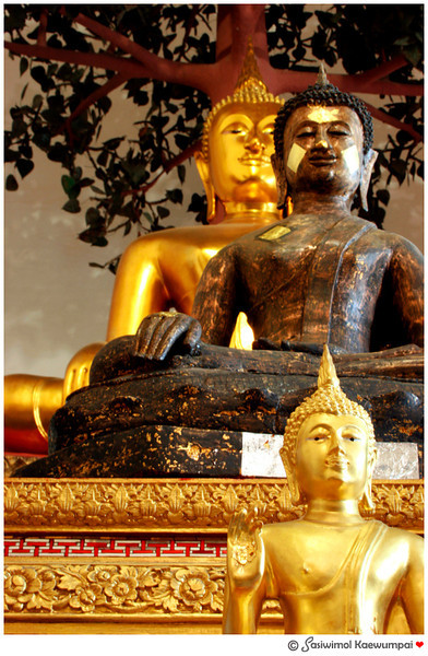 3 Buddha images sitting under Bodhi tree