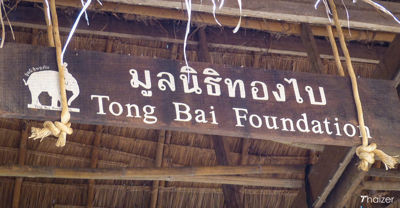 sign for Tong Bai Foundation, Mae Wang, Chiang Mai