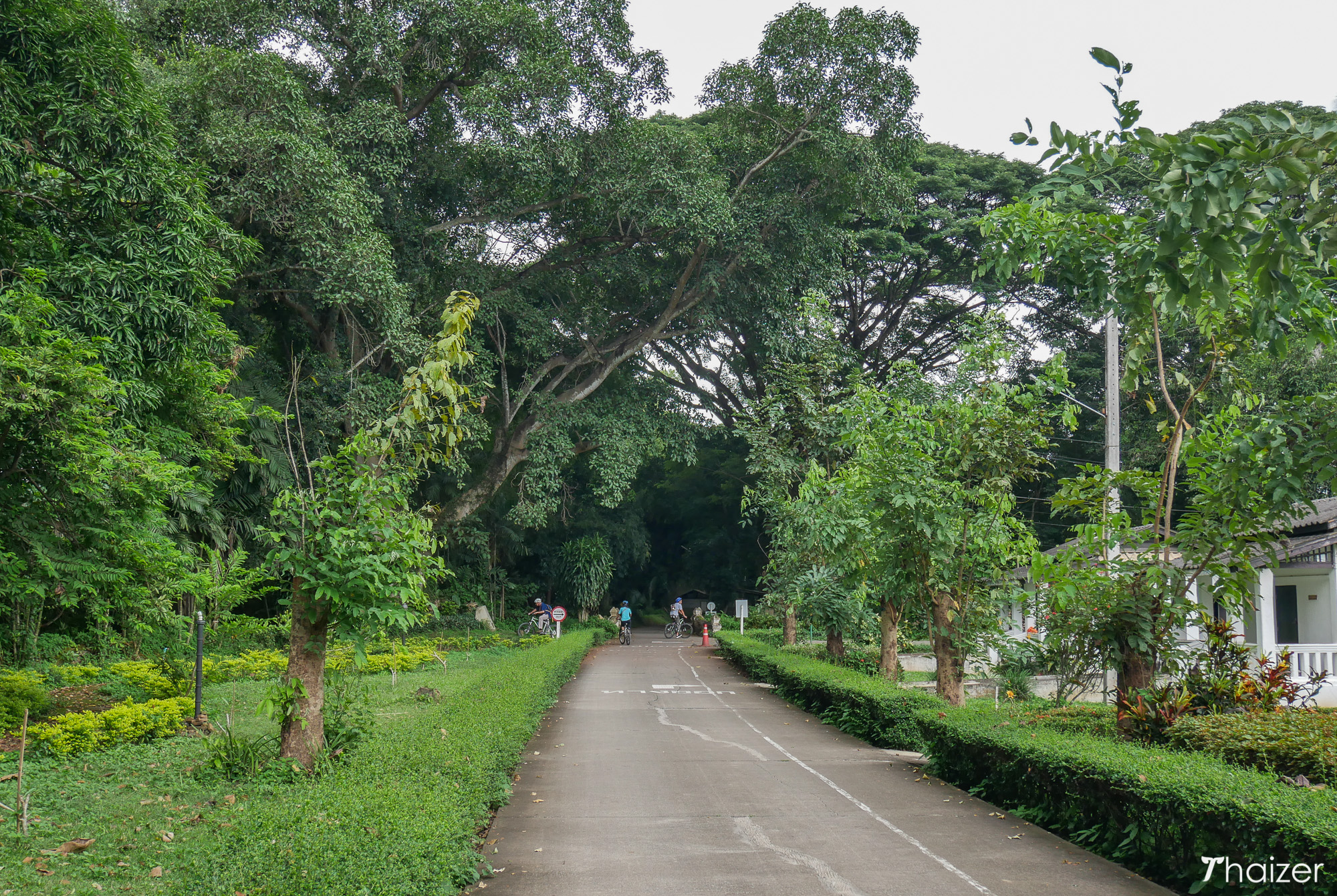 McKean Hospital and Dok Kaew Gardens in Chiang Mai