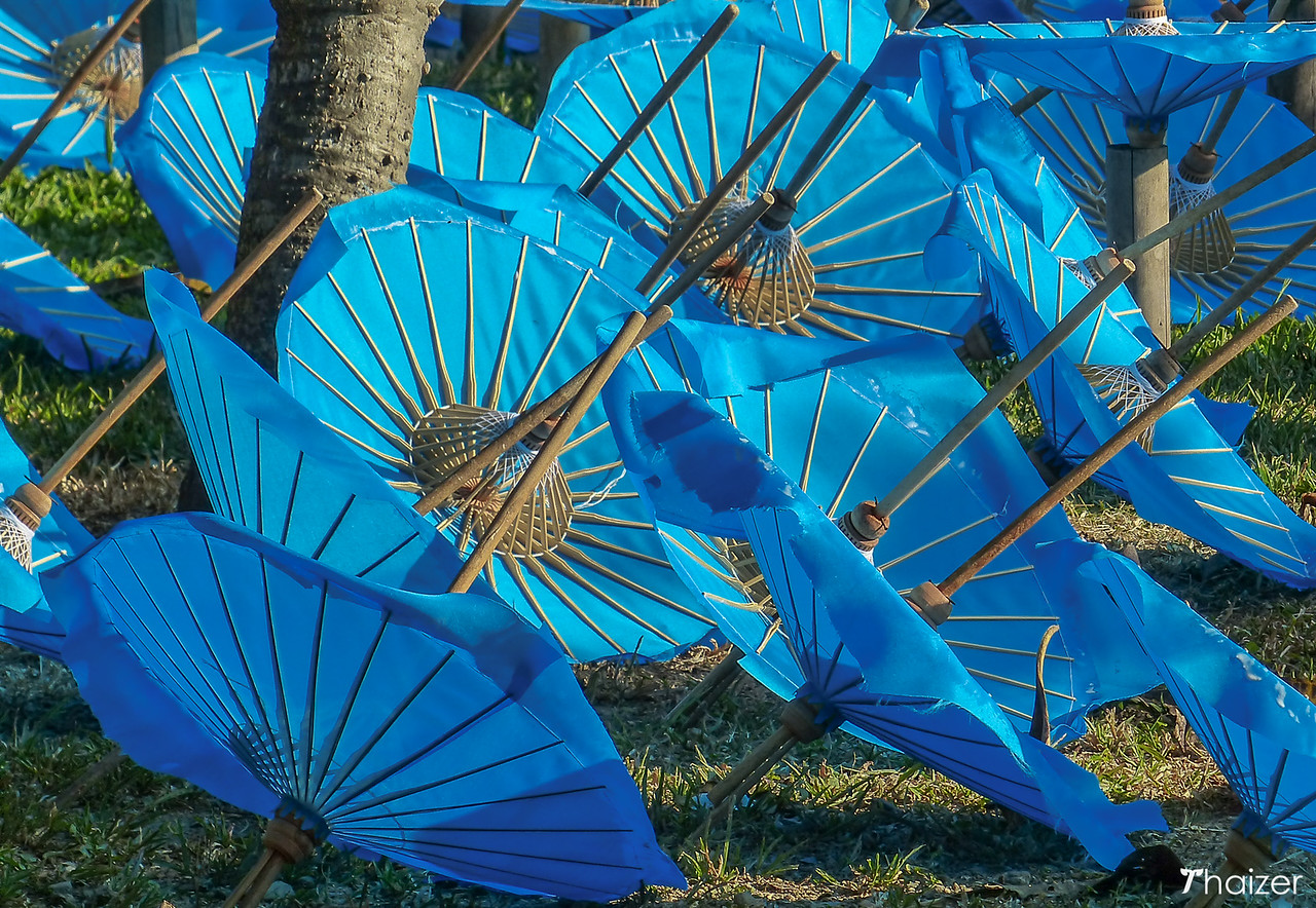 blue umbrellas in Bo Sang
