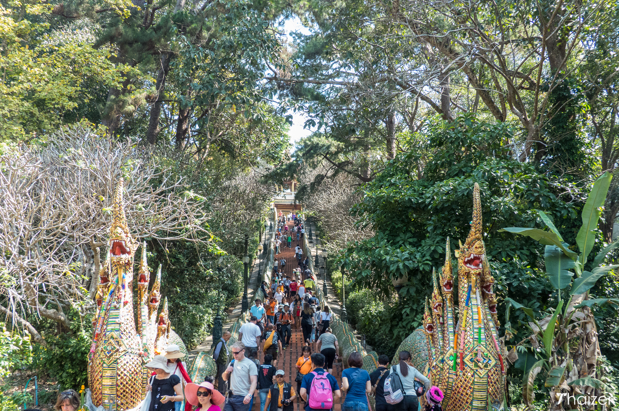 naga staircase at Doi Suthep, Chiang Mai