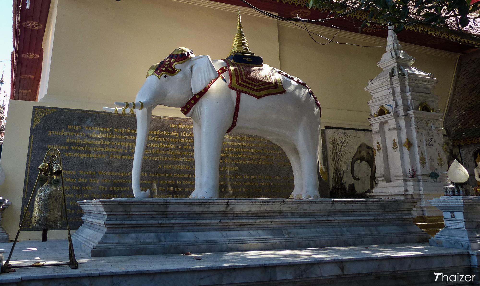 white elephant Doi Suthep temple, Chiang Mai, Thailand