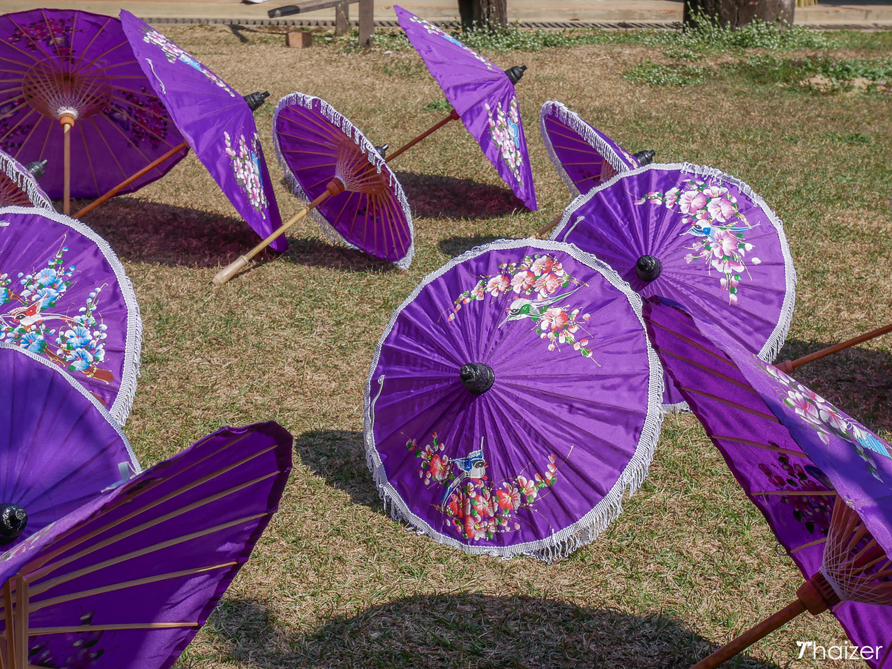drying umbrellas in the sun