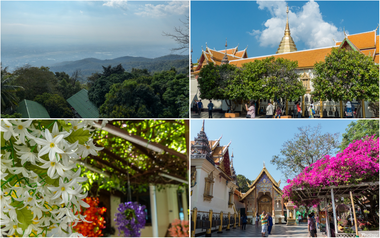 scenery at Doi Suthep