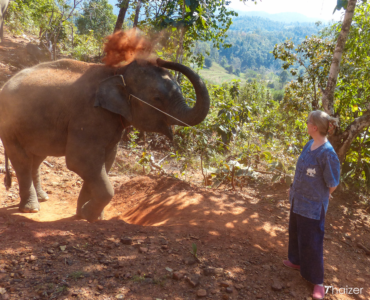 walking with elephants at Tong Bai Foundation, Chiang Mai